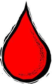 Grupos sanguíneos caninos y transfusiones de sangre. (1/6)