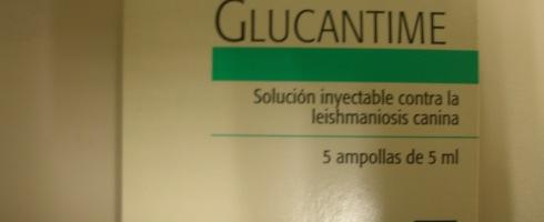 Tratamiento inyectable para leishmaniosis.