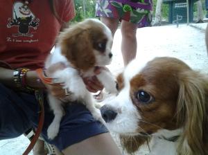 Paca y Lili.