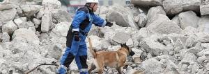 Ejercicio de rescate con perros/Pasaia/24-09-2011/LUSA
