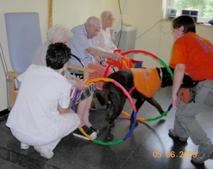 terapia_asistida