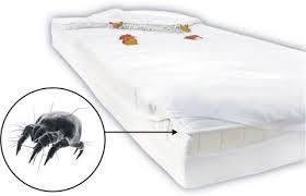 Una funda en el colchón impide a los ácaros contactar con el exterior y alimentarse.
